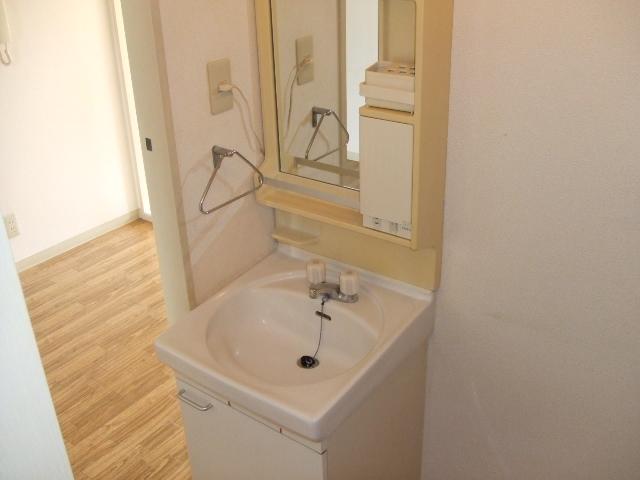 ロイヤルコーポ幸 B 202号室の洗面所