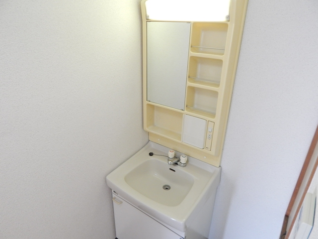 難波ビル 202号室の洗面所
