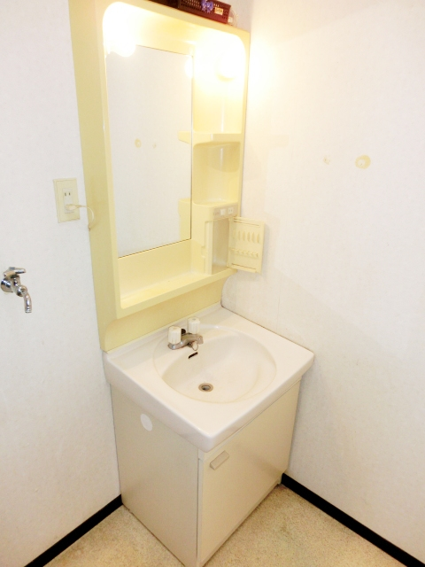 パレスグリーンフォレスト 101号室の洗面所