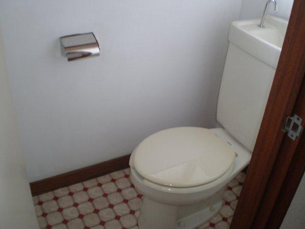 川上ハイツ 201号室のトイレ