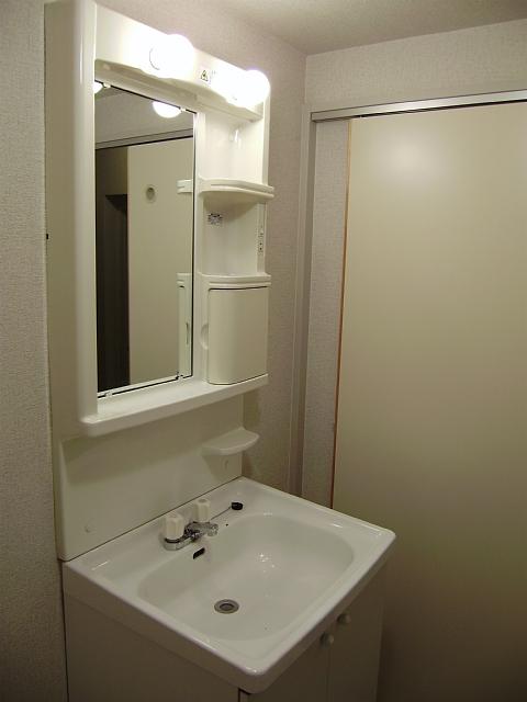 エクステンド 302号室の洗面所
