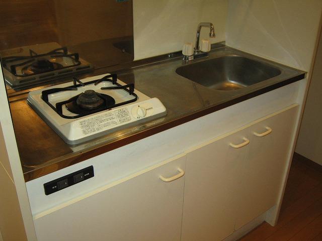 サンクレイドルレヴィール池袋 401号室のキッチン