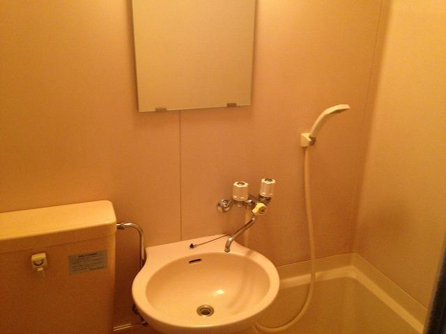 パーシモンハウス 302号室の洗面所