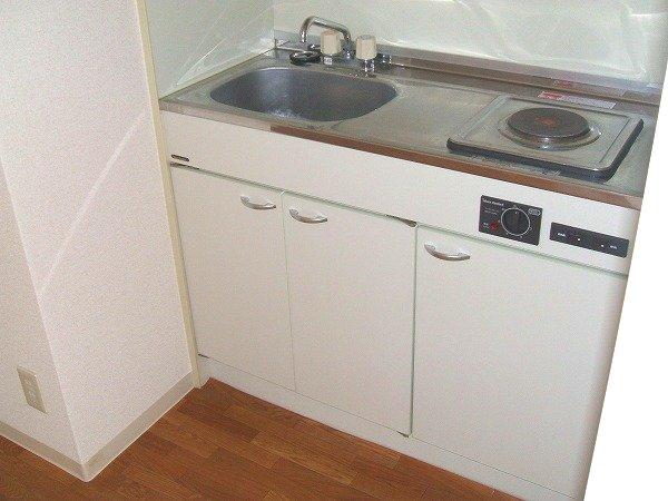 フォルツァ小牧 203号室のキッチン