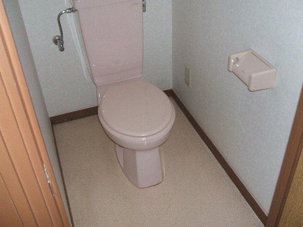 ソレアード中央 305号室のトイレ