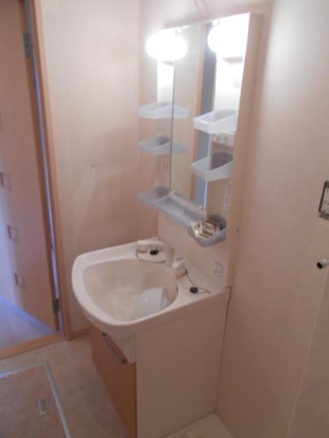 パラシオン 201号室の洗面所