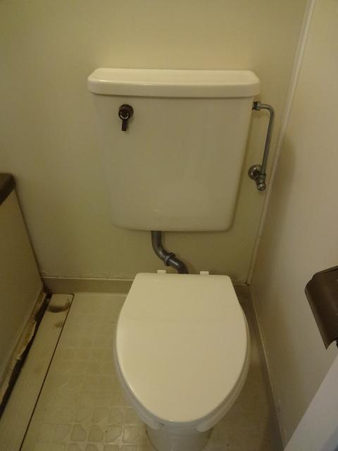 第7田村ハイツ 107号室のトイレ