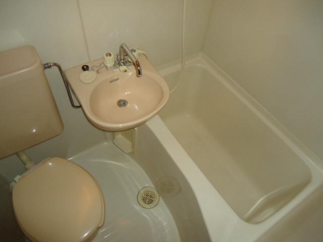 ロイヤルビラ 203号室の風呂