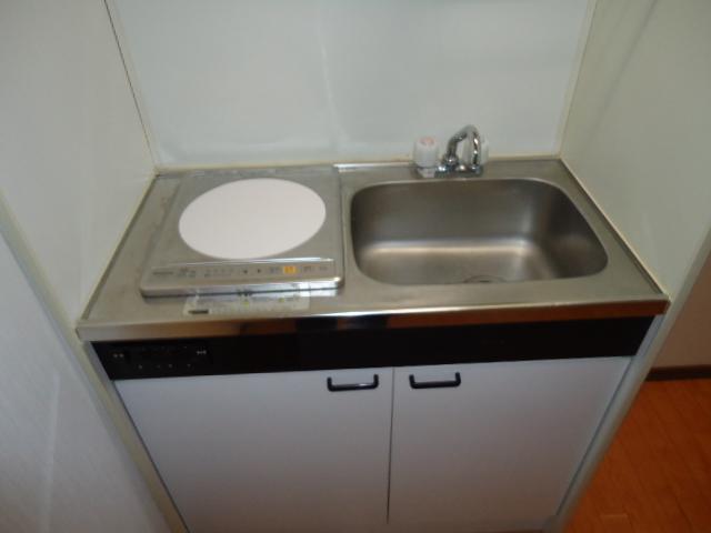 ロイヤルビラ 203号室のキッチン