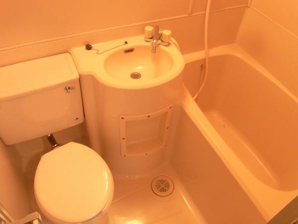 サンマーシュ府中 102号室の風呂