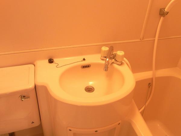 サンマーシュ府中 102号室の洗面所