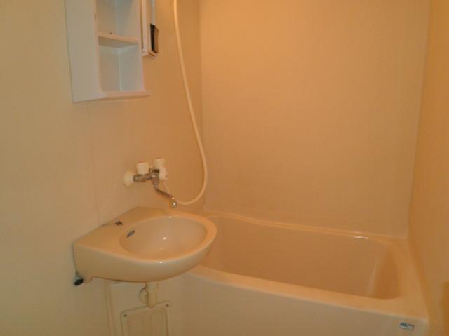 アーバンパレス鷹の台 105号室の洗面所