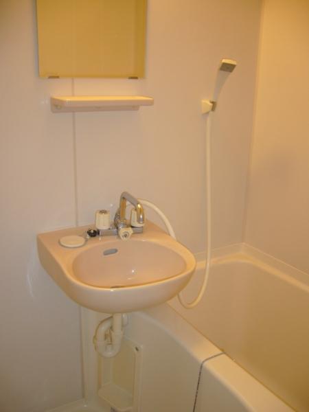 AKK NO1ビル 1B号室の洗面所