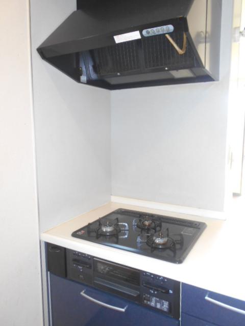 ファミリーメゾン 101号室のキッチン