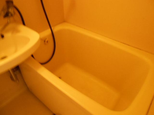 京王電器ビル 302号室の風呂