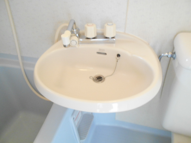 フェニックス聖蹟 205号室の洗面所