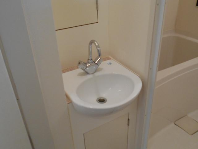 ヴェルドミール聖蹟桜ヶ丘 304号室の洗面所