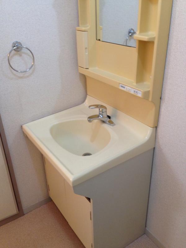 キャッスル 101号室の洗面所