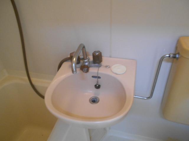 エステートパレス 201号室の洗面所