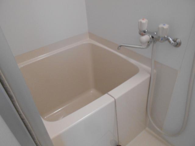 ヴィレッジハイツ 205号室の風呂