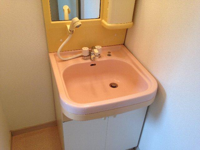 ベルメゾン大橋 402号室の洗面所