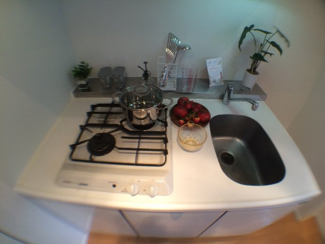 レニール本駒込 805号室のキッチン