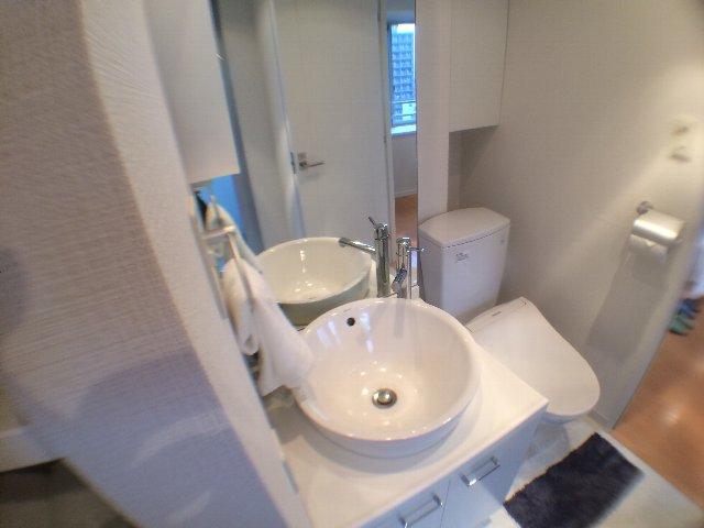 レニール本駒込 805号室の洗面所
