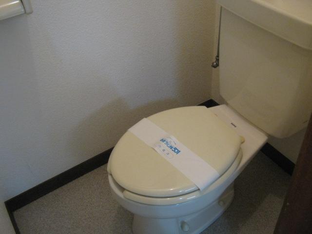 小玉ハイツ 102号室のトイレ