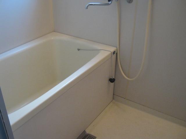 小玉ハイツ 202号室の風呂