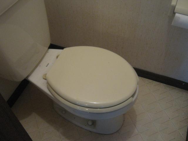 小玉ハイツ 202号室のトイレ