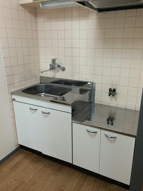 キャヴァンイワタ 205号室のキッチン
