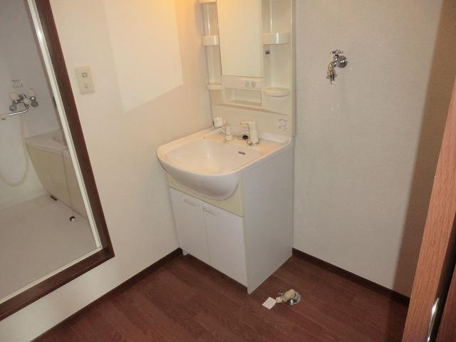 モナーク ヴィレ B棟 102号室の洗面所