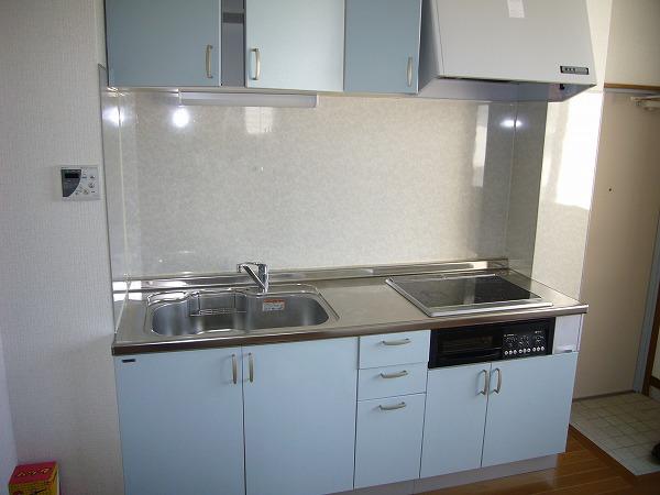 第7ハッピーヒルハイツ 201号室のキッチン