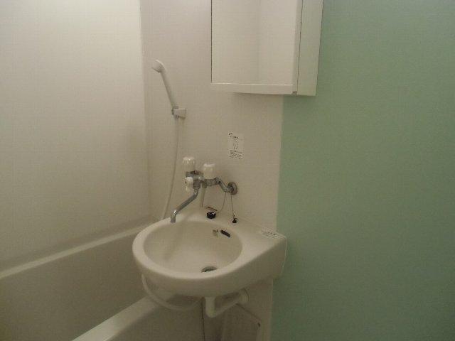 ルミエール 105号室の洗面所