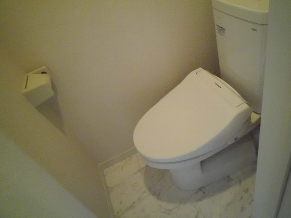 ユナイト田浦マーク・ヘアリー 203号室のトイレ