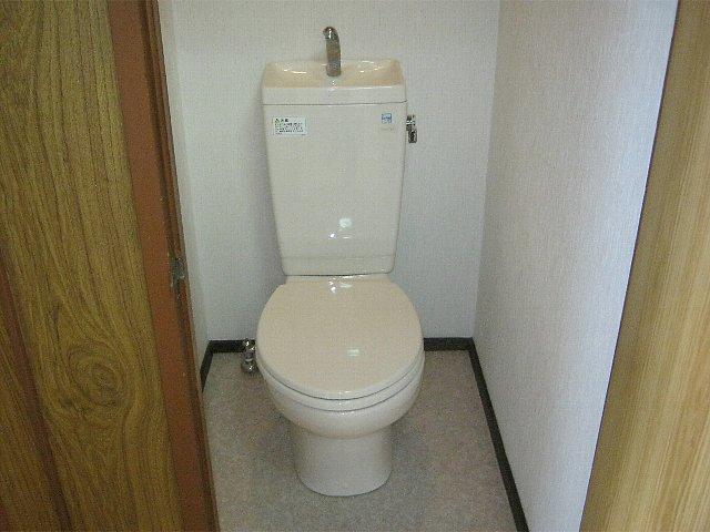 アベアパート 202号室のトイレ