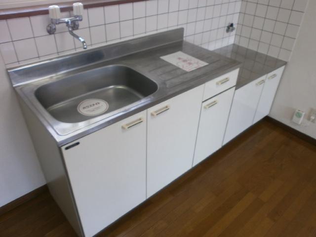 ビューパレス藤井 202号室のキッチン