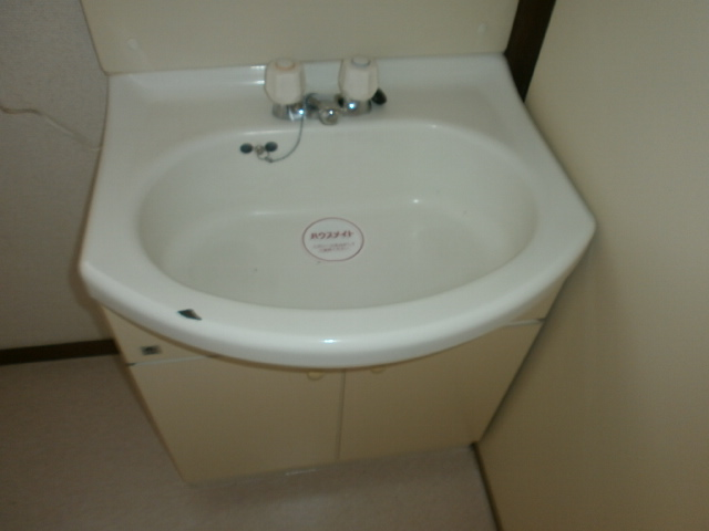 ビューパレス藤井 202号室の洗面所