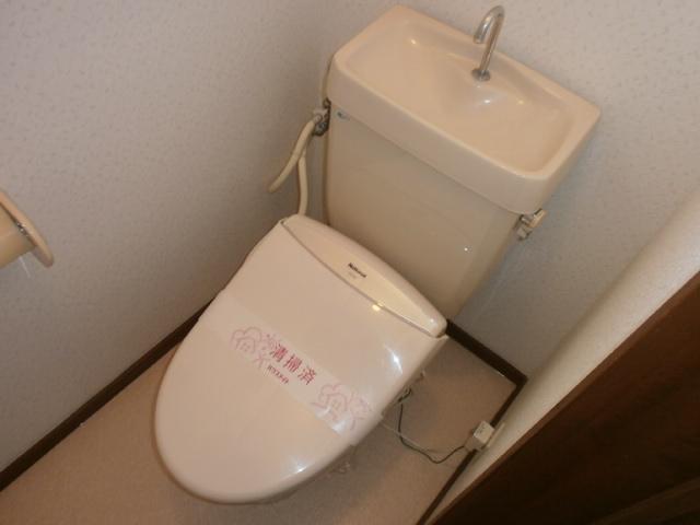ビューパレス藤井 202号室のトイレ