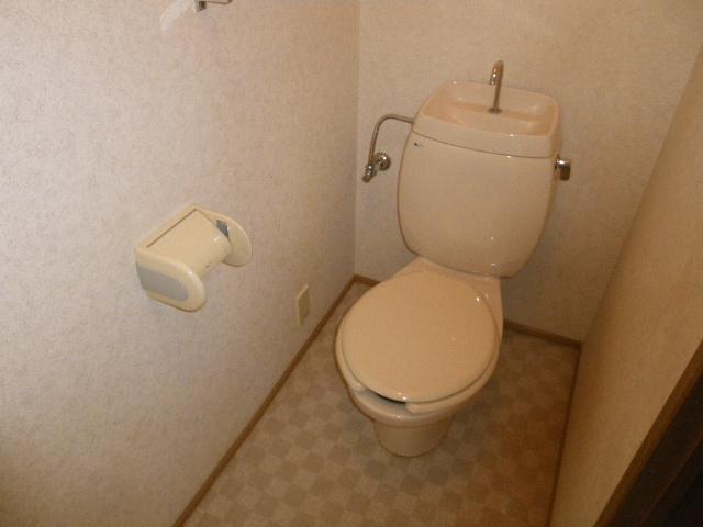 天神台ニューパレスB 102号室のトイレ