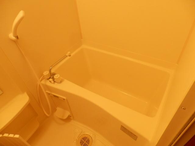 フロント ヴィレッジ 206号室の風呂