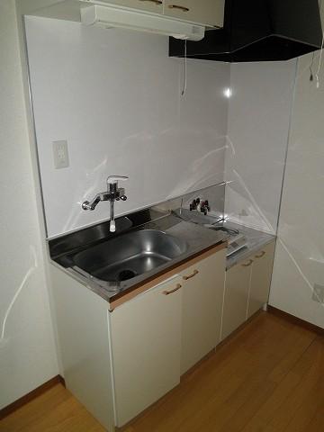 スカイパレス山之手 404号室のキッチン