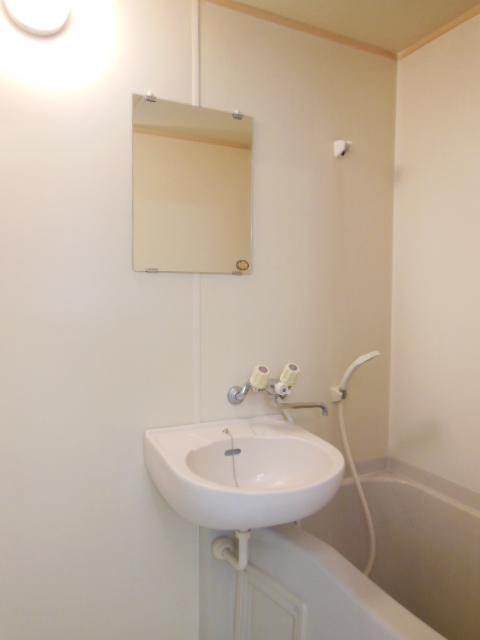 ハイツナカミチ 203号室の洗面所