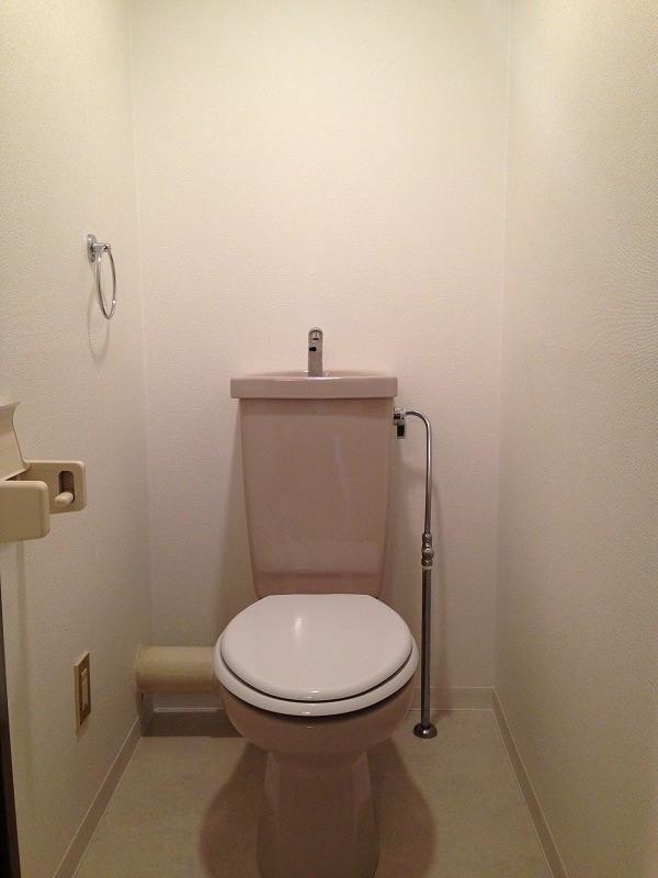 ルック神田 403号室のトイレ