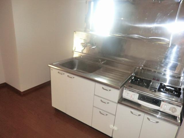 タウニー新安城B 201号室のキッチン