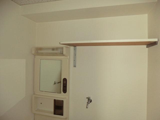 210ルミエール 314号室の洗面所