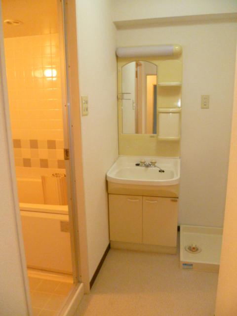 アルパインメゾン 705号室の洗面所