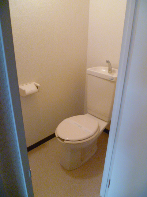 アルパインメゾン 705号室のトイレ