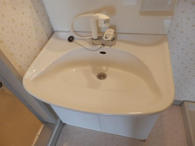 サンライズ清香 303号室の洗面所