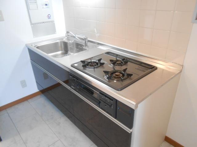SK BUILDING-21 3B号室のキッチン